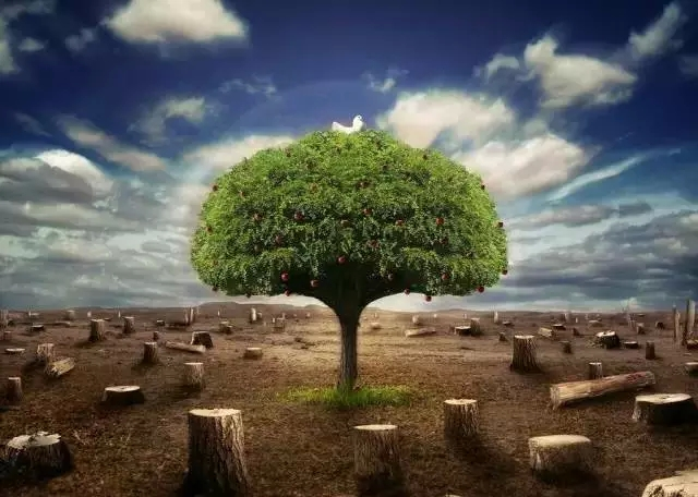 【世界清洁地球日】绿色科技改变行车生活